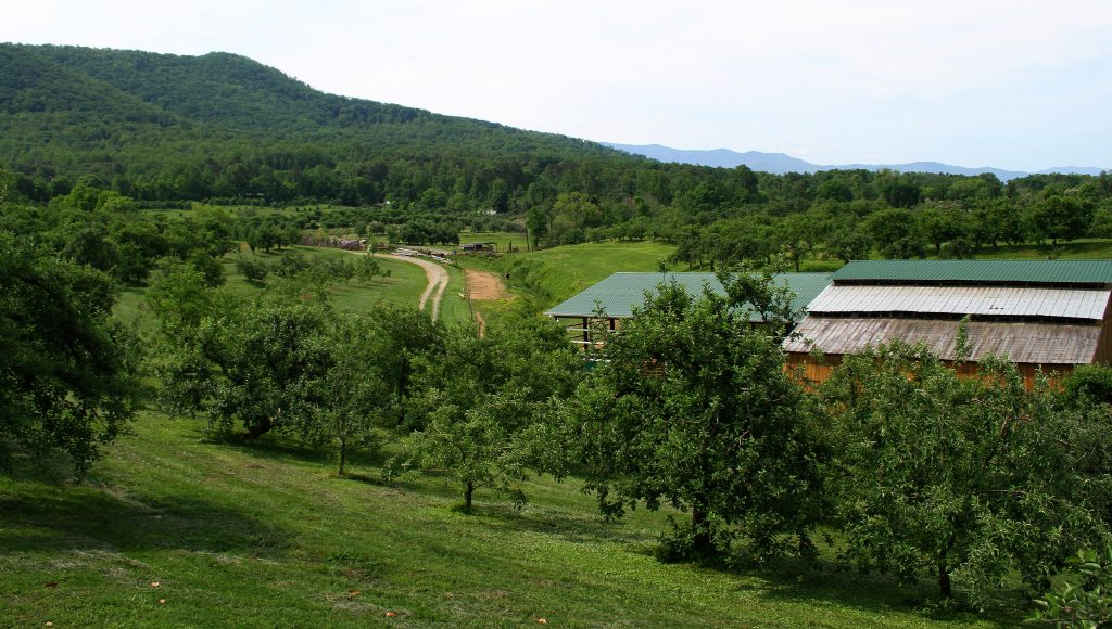 Carver Orchards
